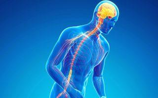 Parkinson et chute